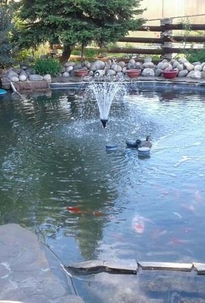 Искусственный водоем с фонтаном
